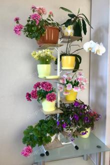 Металлическая подставка для цветов купить тел. (098) 300 11 00