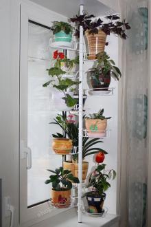 Распорки для цветов на подоконник своими руками
