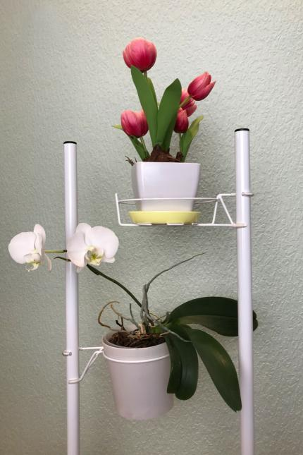 Flowers stand, stand for plants, plant stand