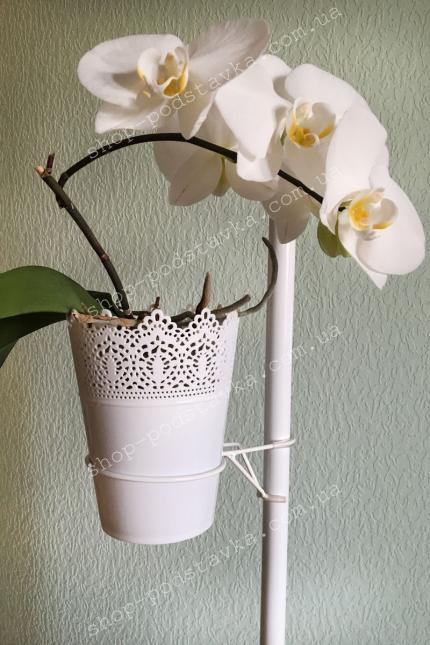 держатель для орхидей, подставки для орхидей недорого тел.098-300-1100