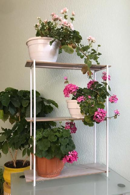 Цветы на стене, разместить цветы на стене, декор, полочка для цветов, настенная полочка