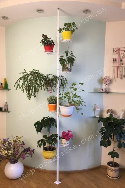 Распорка для комнатных цветов купить  тел. (098) 300 11 00