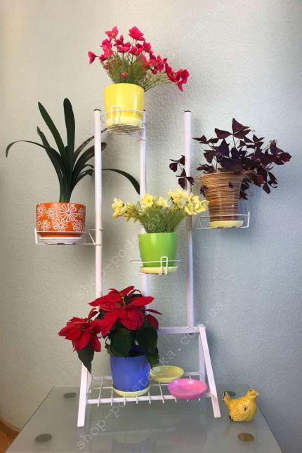 Цветы на окне, фиалки, хранить, полочки для цветов, корзинки для цветов, цветочные подставки
