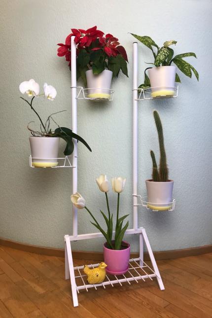 Підставки для квітів, домашні рослини, квіти на вікні