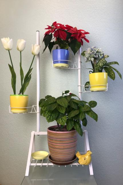 Flowrs stand, plant stand, stand for plants
