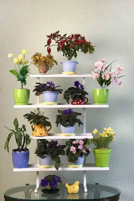 Стеллажи для рассады и цветов по выгодной цене тел. (098) 300 11 00